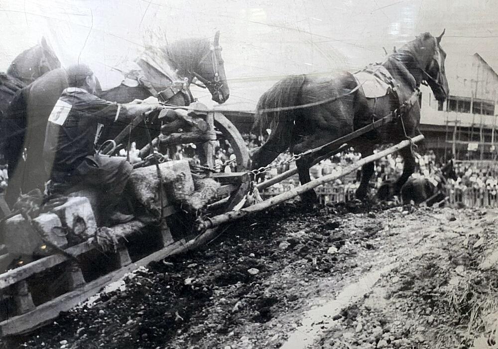 林業造材の仕事は、古くから人力や馬を使った作業が中心で、今も肉体労働のイメージが強く残っています。