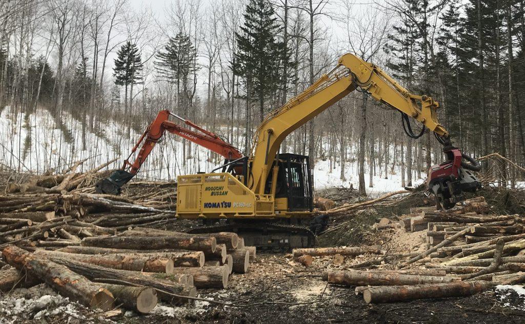 今の林業造材作業のほとんどが機械、重機操作がメインで肉体を酷使する労働ではありません。