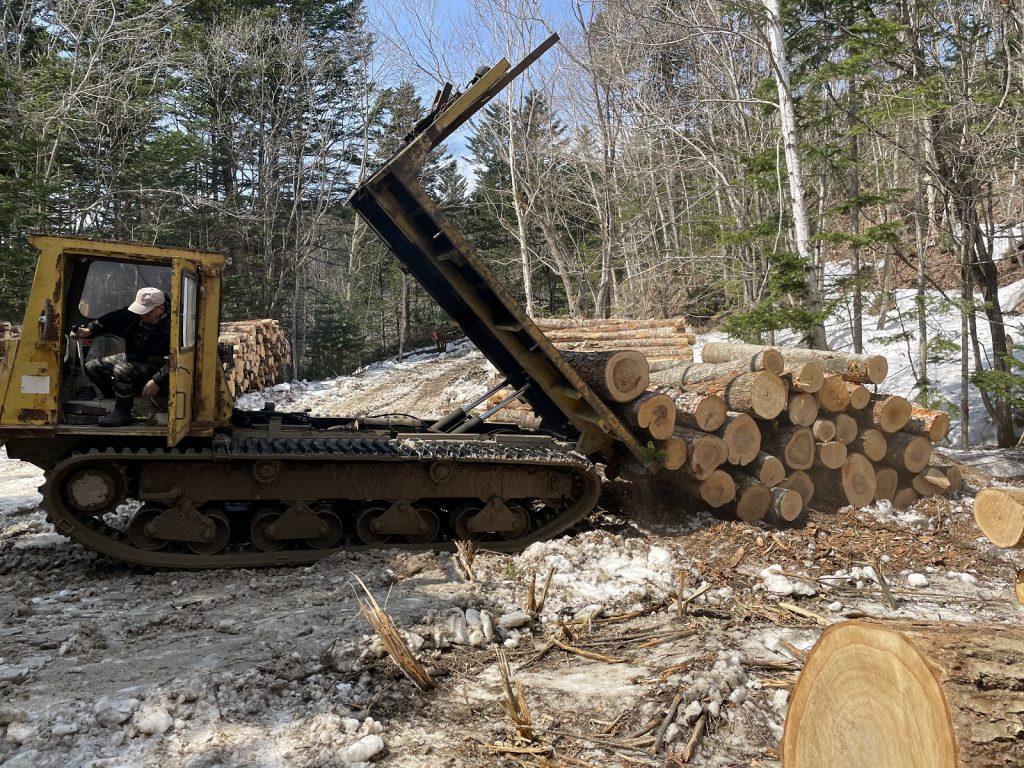運搬するトラックが入れる地点まで木材を運んでくる必要があります。