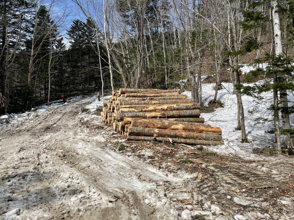 今も木材を伐採する造材は冬が繁忙期