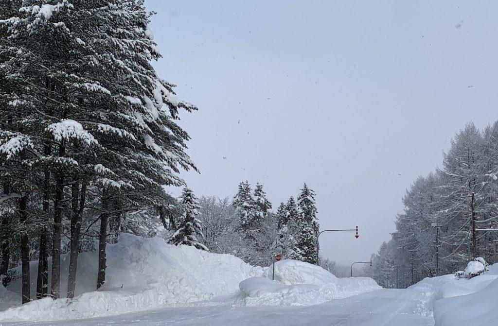 日本海側の留萌地方は積雪深が150cmを超え、暴風雪でも知られる冬が厳しい地域です。
