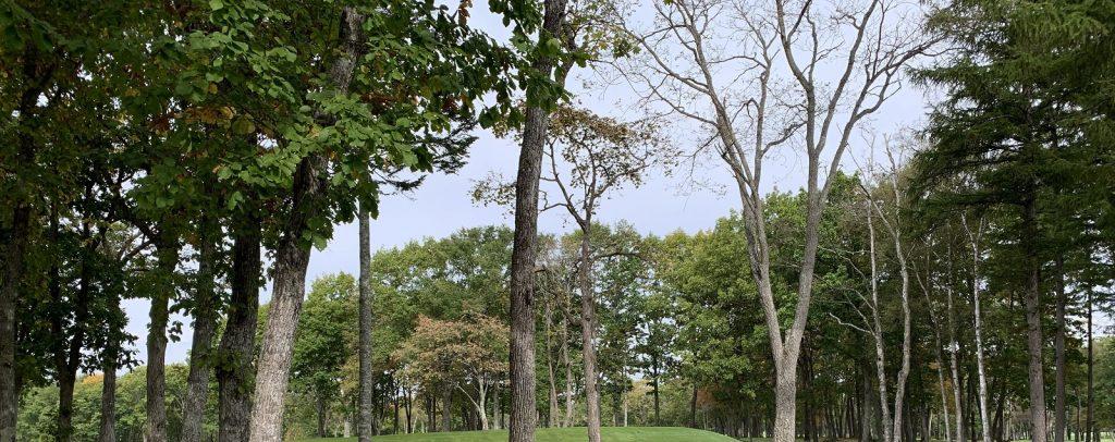 三和林業の人材募集について