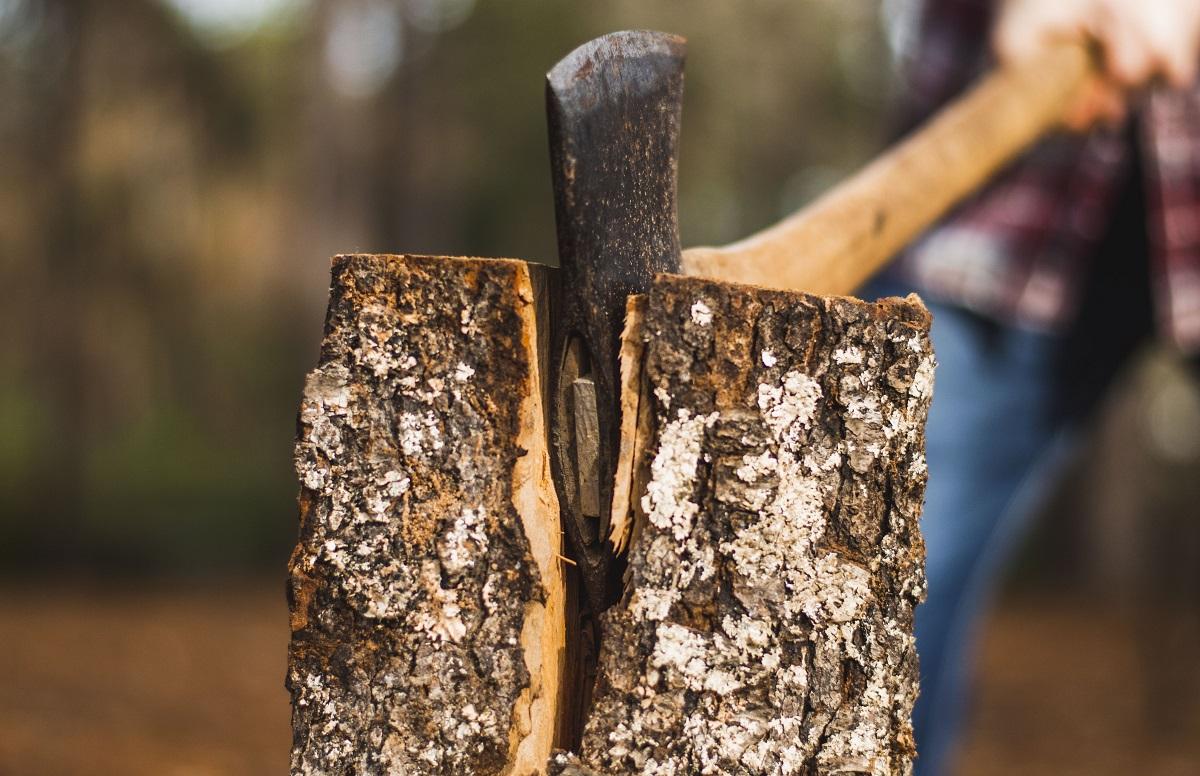薪割り作業は水を少し含んでいた方がよく、原木を入手したらすぐに薪にします。