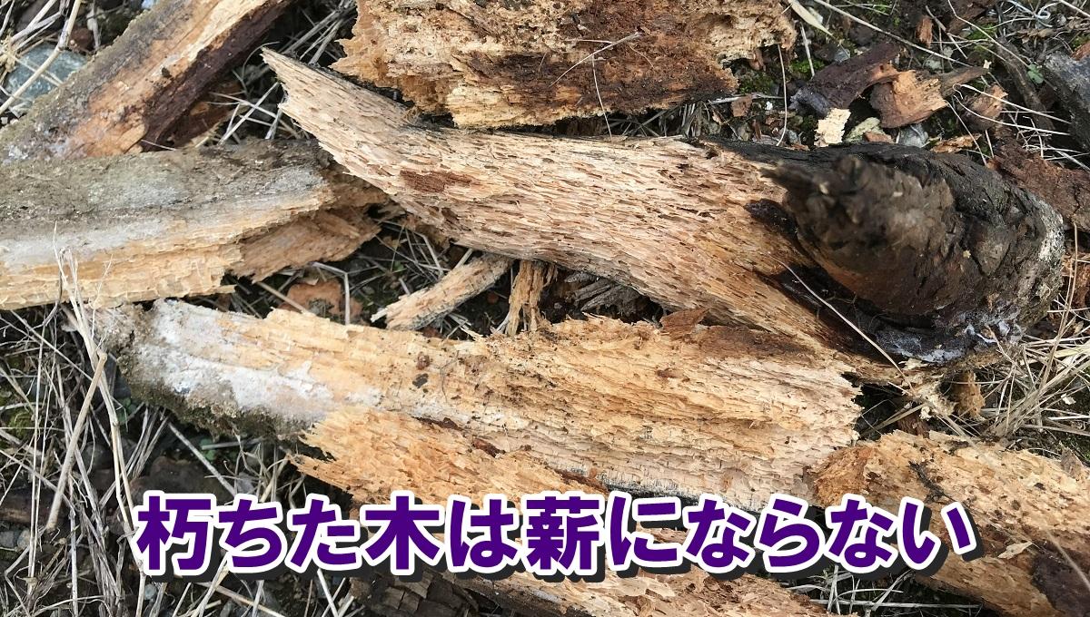 朽ちた木は十分な熱量を発生せず煙が多く発生してしまい、薪として使えない。