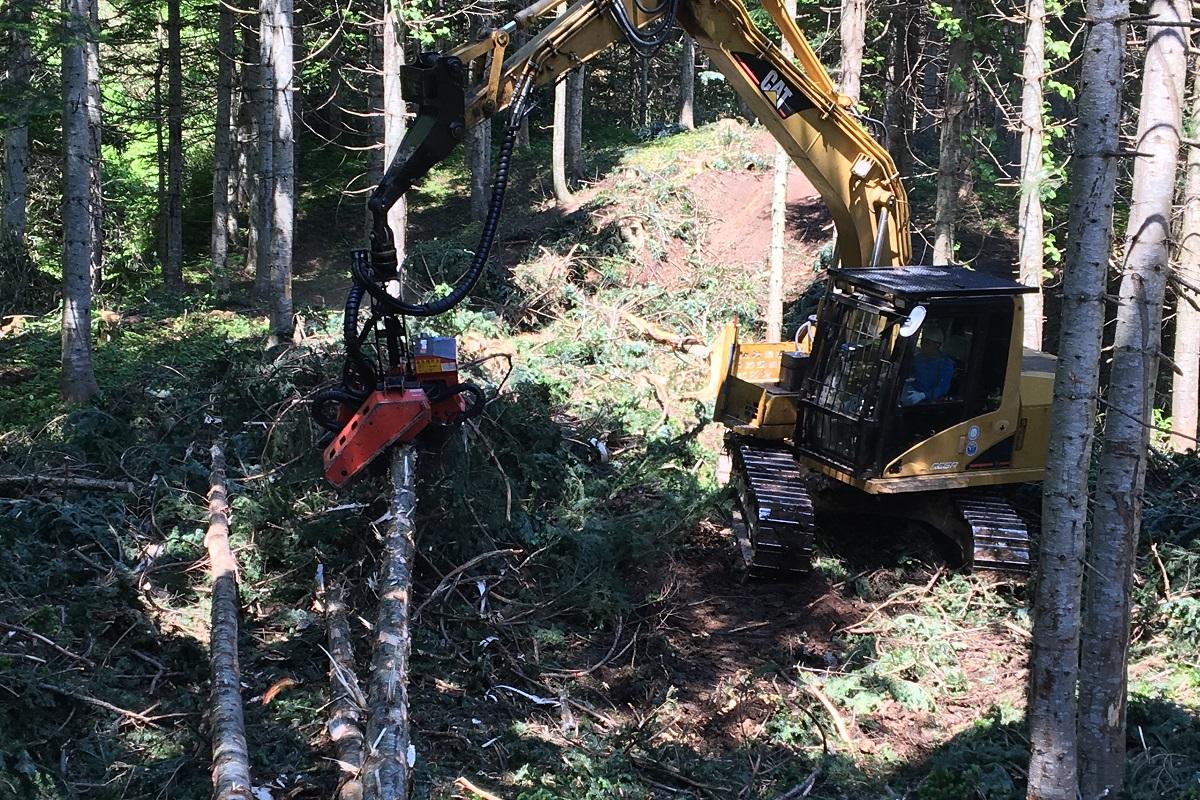 山林内の間伐を効率よく進めたり、安全に伐りだす造材技術は必ず必要になります。