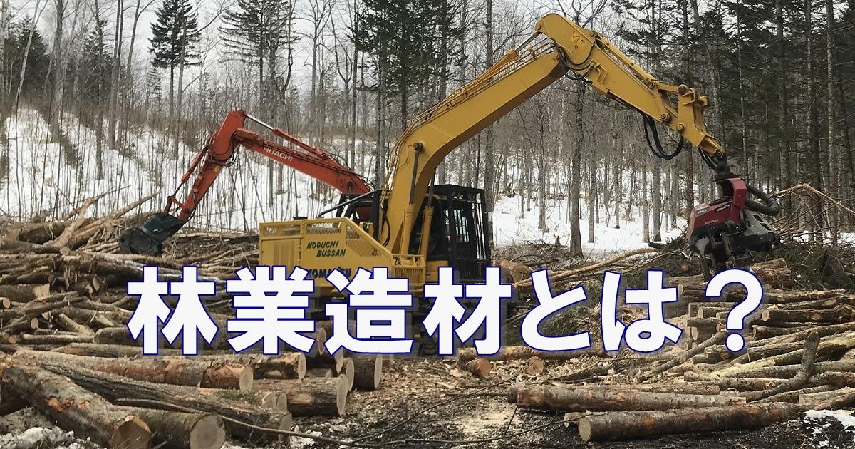 林業造材の仕事とは?